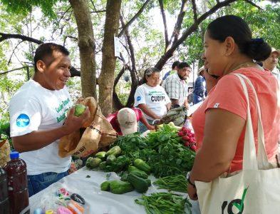 Agricultura y Alimentación Sana, Diversa y Soberana