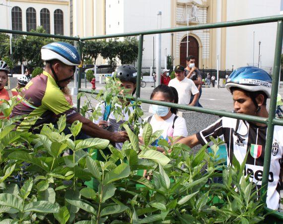 CESTA celebra el Día Mundial de la Bicicleta con entrega de árboles